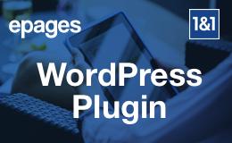 Verkaufen auf WordPress Logo